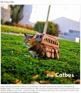 「ネコバス」に変身した本物の猫(ブログより)
