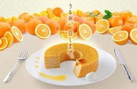 画像は「コラフルクーヘン オレンジ」