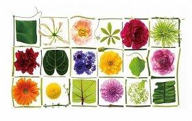 「マミフラワーデザイン展2013『花、ディスカヴァリー』」