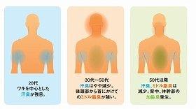 ミドル脂臭は、後頭部から首の後ろに出やすい