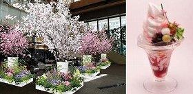 Sakura Caféのイメージ(画像左)と「チェリーブロッサムパフェ」