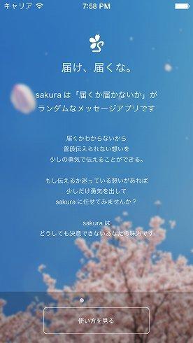 「sakura」