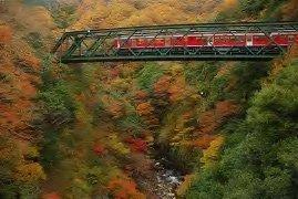 箱根のスイーツを楽しめる登山電車