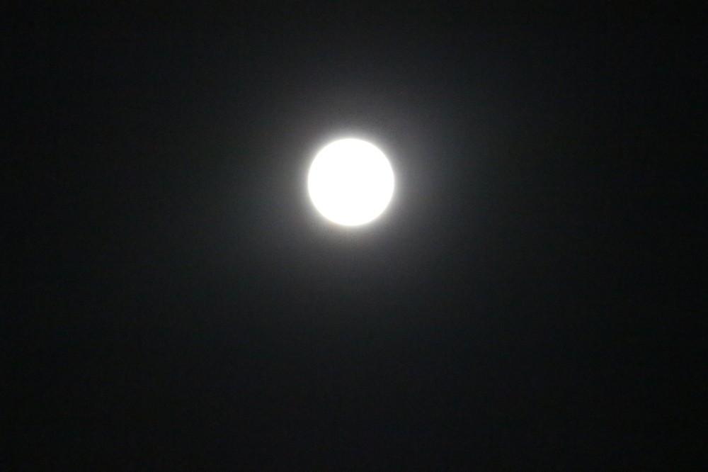 まんまるお月さん