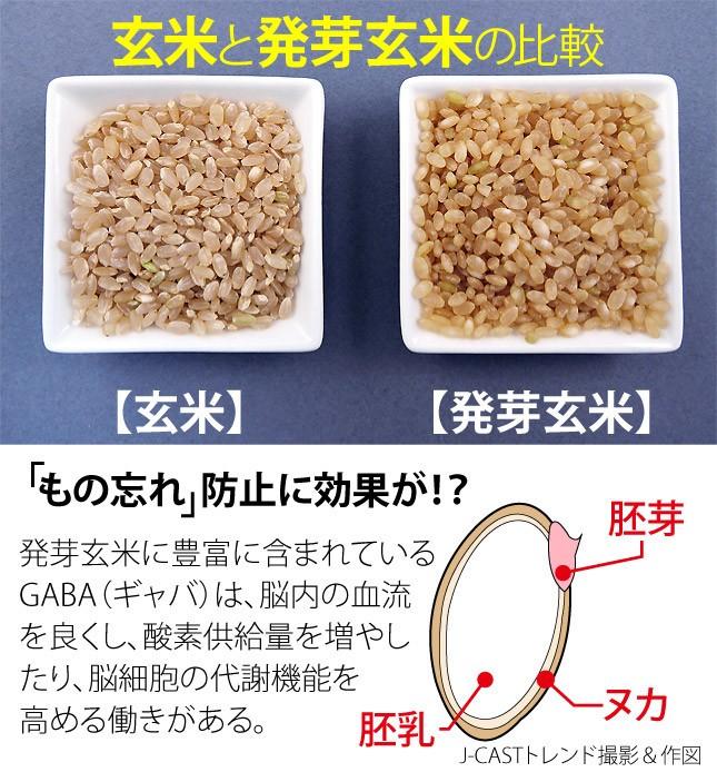 発芽玄米は食べやすくて、しかも栄養価が高い