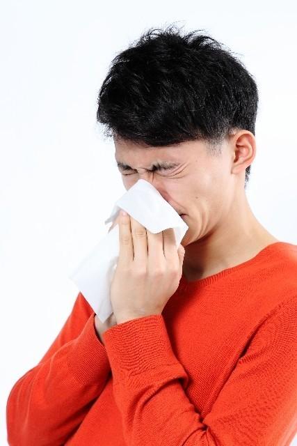 1月から始める花粉症対策 2016年の春は「シジュウム茶」で乗り切る!