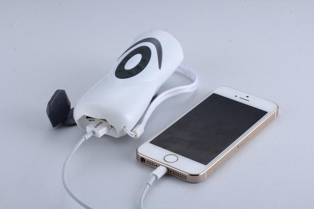 手回し式充電ラジオライト「プチサンダー」