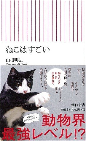 「ニャン・ニャン・ニャン」は猫の日 可愛い、強い、やさしい、変なやつ