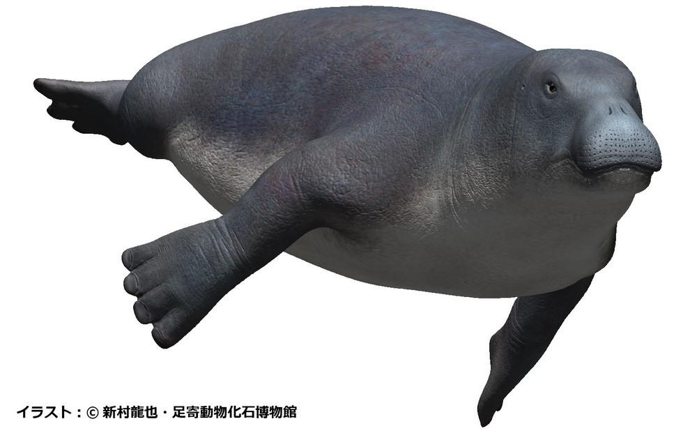 キャプ:デスモスチルスは古代の哺乳類だった!