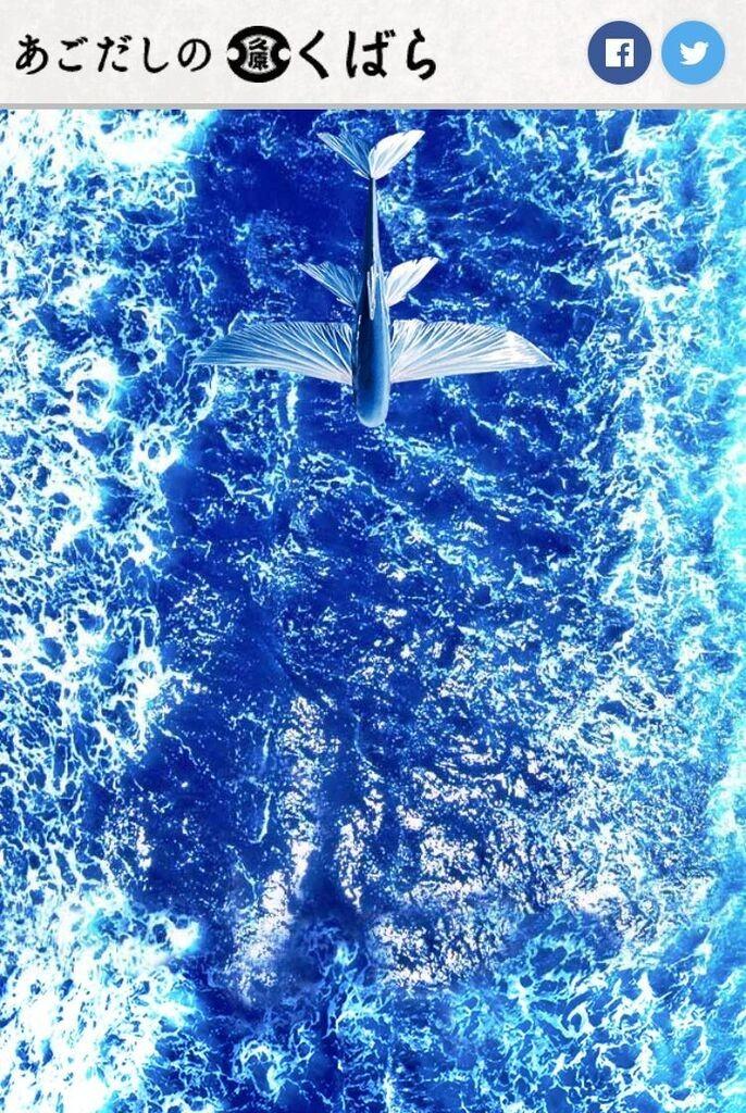 トビウオになって海面をひたすら飛ぶ