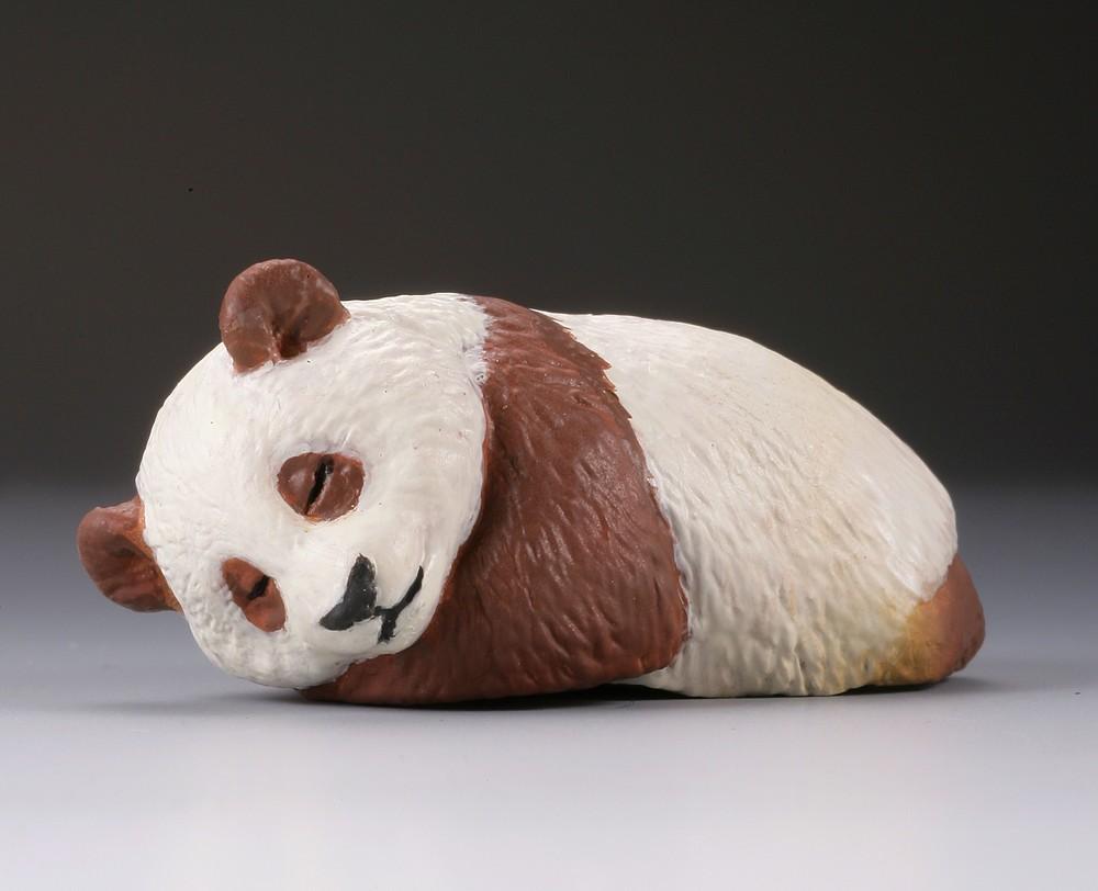 稀少な「茶色パンダ」バージョンも