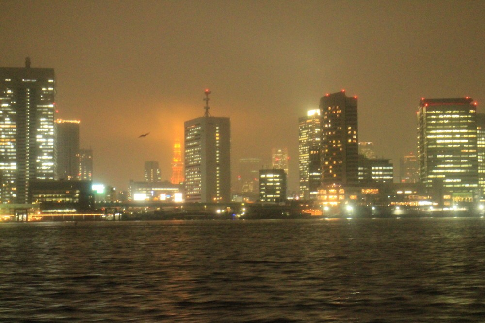 先っちょが雲に隠れた東京タワーも見えた