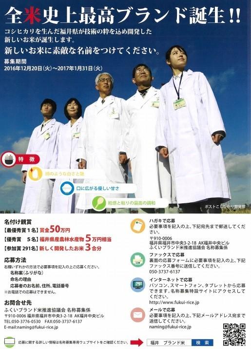 福井県の新しいお米「越南291号」の名称募集