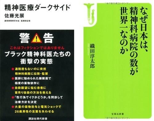 日本の精神医療の現場報告を、哲学や歴史の視点から読み解くことでみえてくるものがある