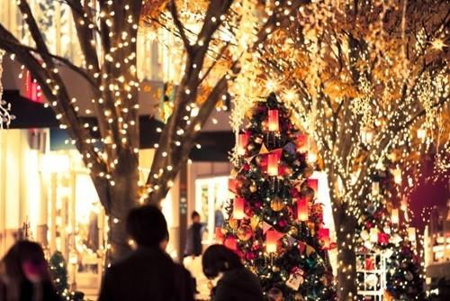理想のクリスマスデートは?