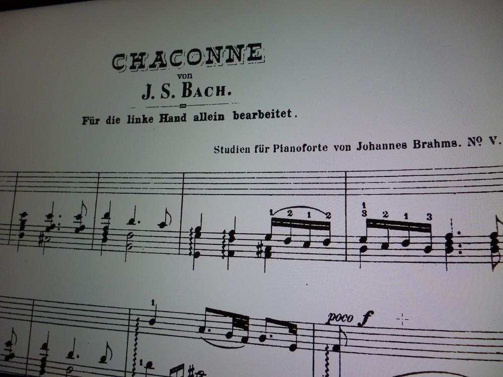 制約の中で美を追求 バッハ作曲、ブラームス編曲「左手のためのシャコンヌ」