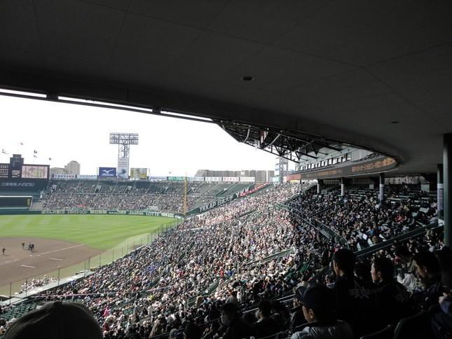 5試合で749球、金足農・吉田は大丈夫か 元横浜・古木克明「肘肩がぶっ壊れるぞ」