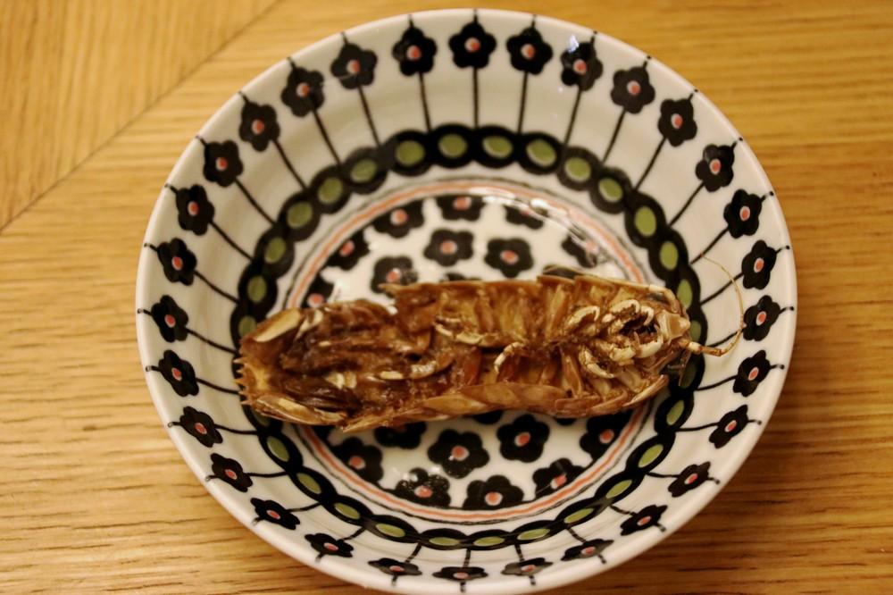 取り皿に移したオオグソクムシの丸揚げ(裏面)