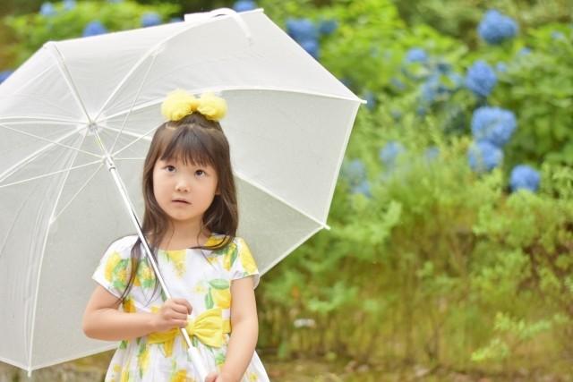 奄美地方が全国で最も早く「梅雨入り」 気象庁は「その日」をどうやって決める?