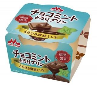 夏にぴったりな清涼感あるチョコミント とろける食感のプリン