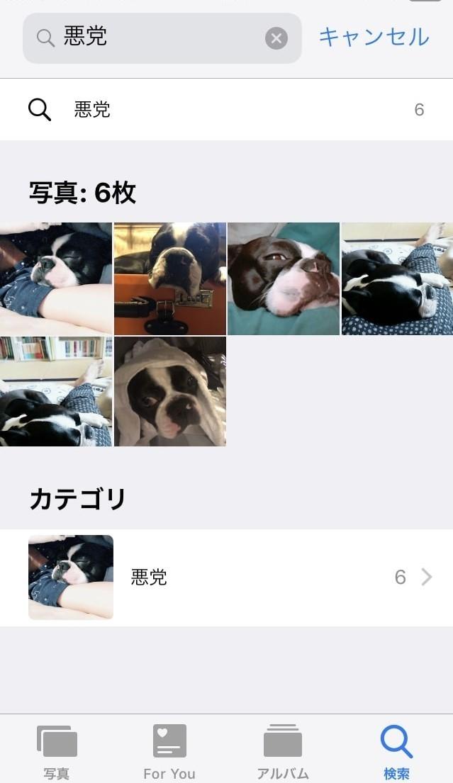 Hey, Siri、「悪党」の写真見せて! iPhoneに表示された写真が意外すぎる