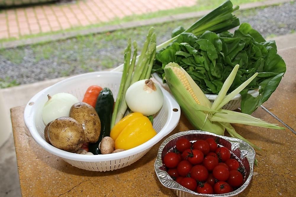 Oisixの野菜