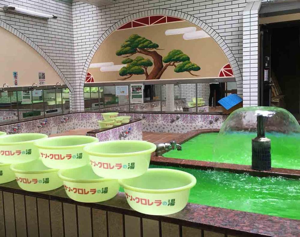 お湯も風呂桶も緑、緑、緑 京都の老舗銭湯がクロレラに染まる