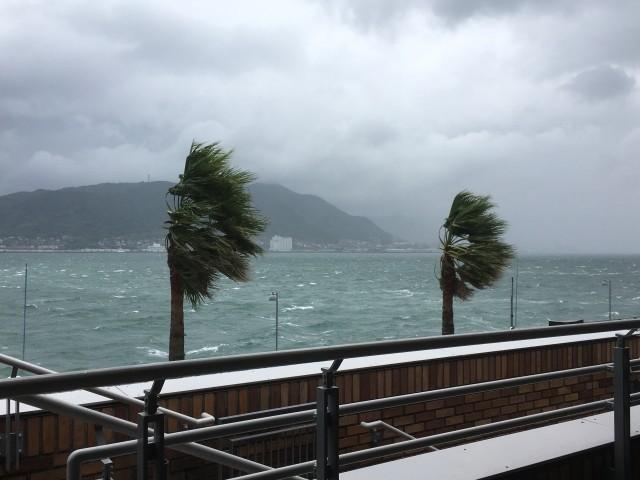 今年の台風は「土日にばかり来る」本当か 上陸・接近日を検証してみたら