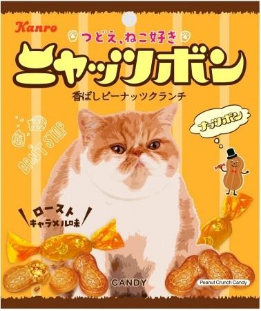 「猫の日」向けに「ナッツボン」が「ニャッツボン」に パッケージを独占したのは...