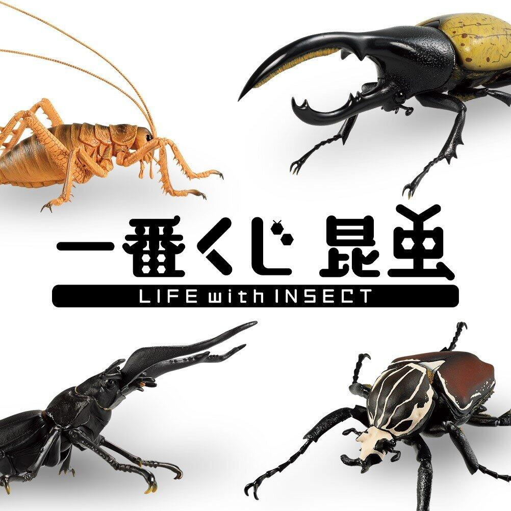 「昆虫」テーマの「一番くじ」 原寸大「ヘラクレスオオカブト」フィギュア