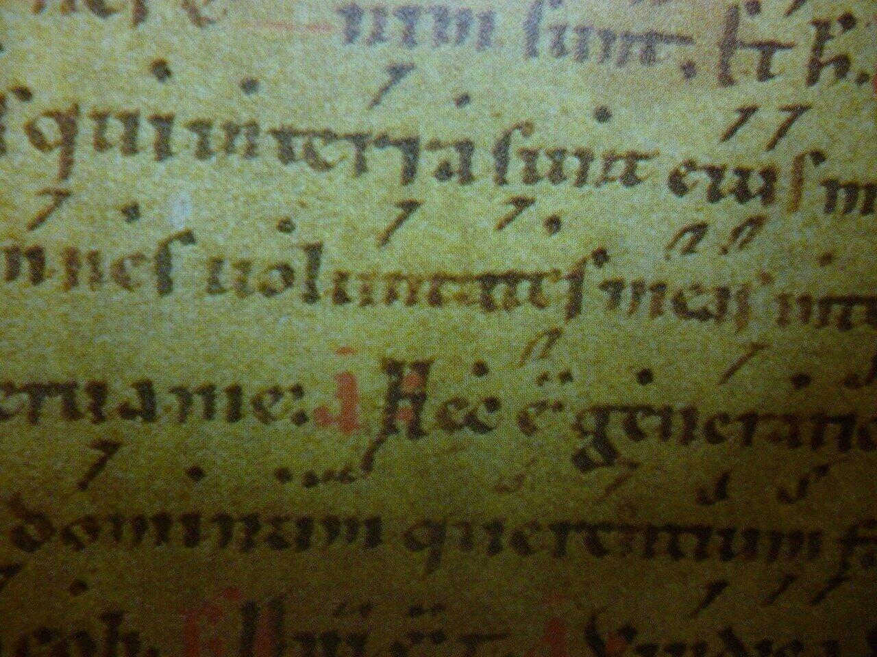 ネウマと呼ばれる、聖歌の言葉に印をつけた中世の楽譜。テンポやリズムなどの指示は一切ないが、現代でも使われている