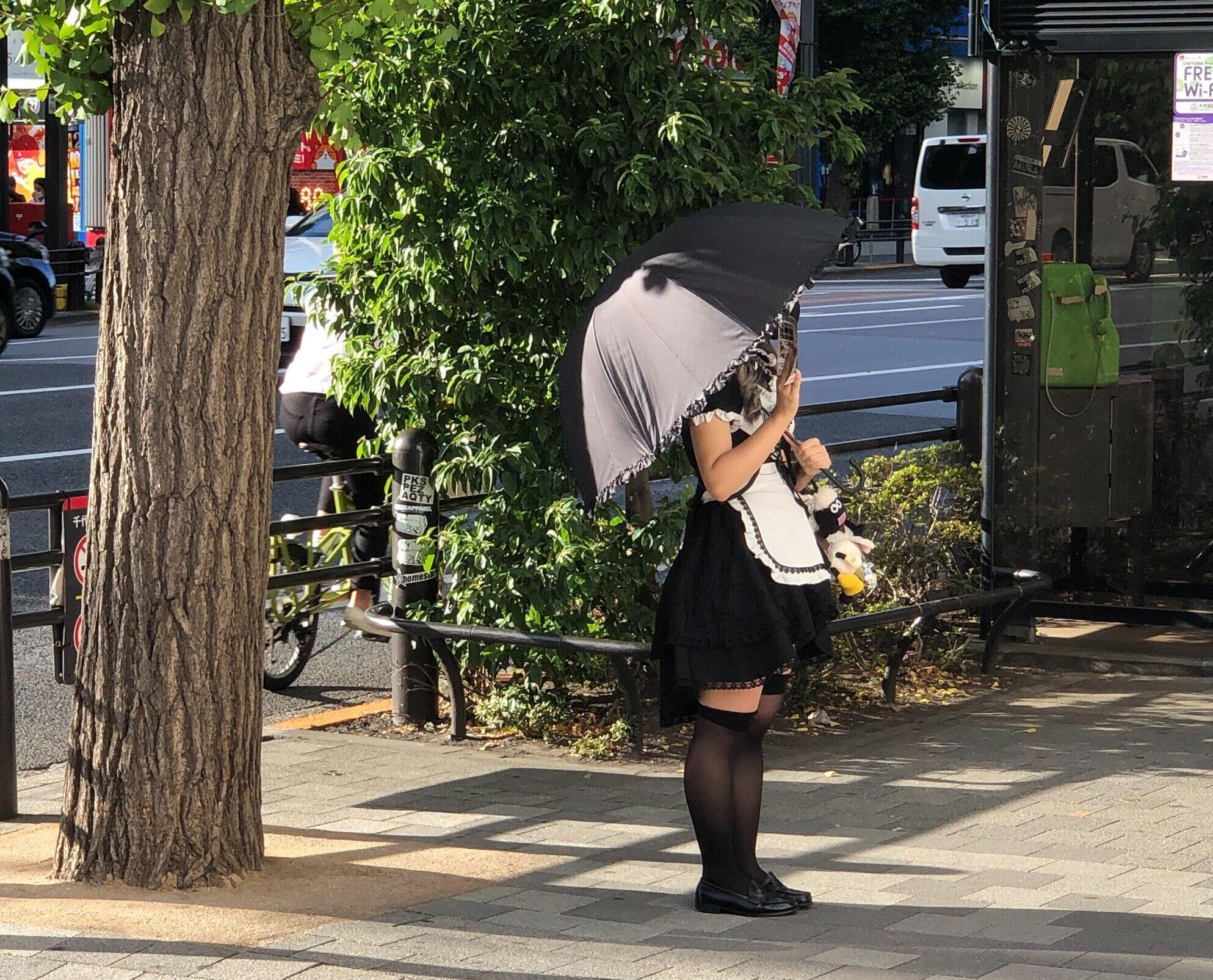 日傘を差しながらチラシを配るメイドさんも