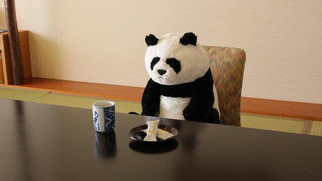 白浜ホテルで「祝・赤ちゃんパンダ誕生」 座高40センチのぬいぐるみ付プラン