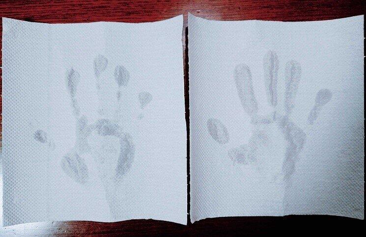 (左から)「合掌水切り」した手(b)、適当に10回横へ振った手(a)
