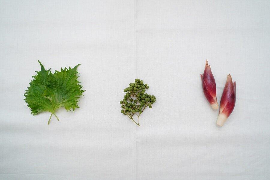 関東も梅雨入り、この時期は薬味とハーブで「腸活」 今が旬の葉に山椒、ミョウガ
