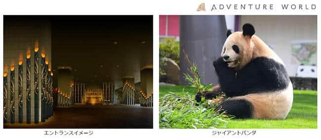 「七夕meets竹あかり」に一部ジャイアントパンダの食べ残した竹幹を提供