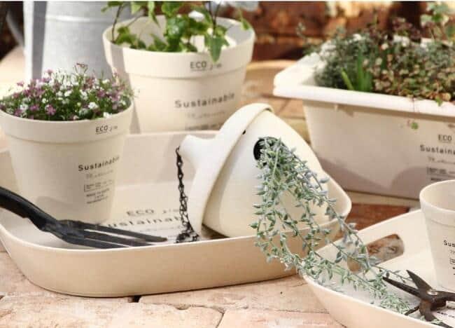 植物が引き立ち、インテリアにも合う環境に優しいポット