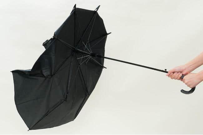 強風時にはあえてポキッ 「折れても戻る」抗ウイルス傘