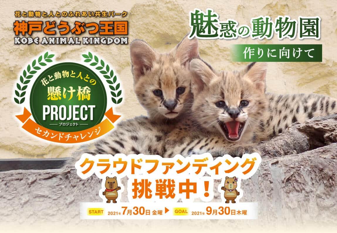 目標金額は3000万円(8月31日現在、達成度は50%)