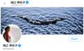 池江璃花子さんに「五輪辞退」を求める投稿 番組で徳光和夫・城島茂・石原良純・和田アキ子さんが贈ったそれぞれのエール