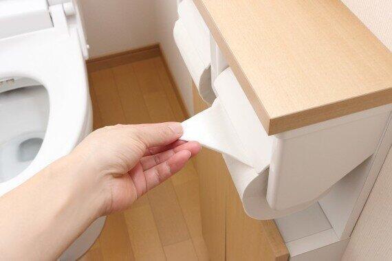 トイレの「三種の神器」は消えゆく運命?(写真はイメージ)