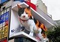 新宿10メートル超「巨大ネコ」が話題 加藤浩次「リアルだから怖さも。かわいいとは...」