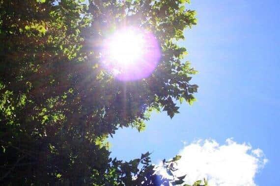 暑い日が続いている(写真はイメージ)