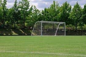 サッカー日本代表の活躍が注目を集めた(写真はイメージ)