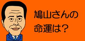 鳩山さんの命運は?