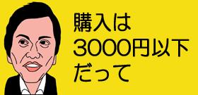 購入は3000円以下だって