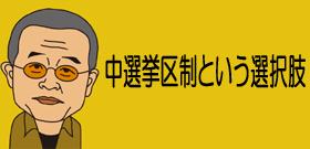 中選挙区制という選択肢