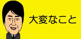 瀬戸内海「島のお医者さん」奮闘記!タヌキに噛まれりエイに刺された人も来るよ