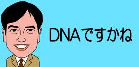 DNAですかね