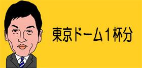 東京ドーム1杯分